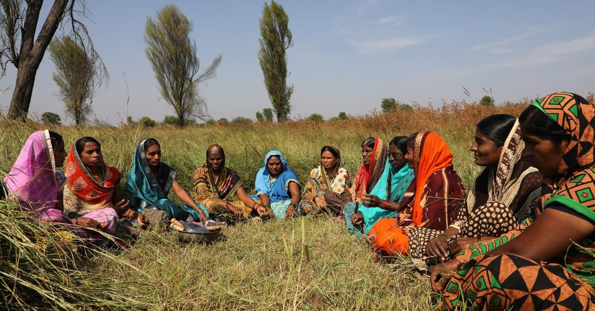 South asian women sitting in semicircle in field wearing brightly colours saris